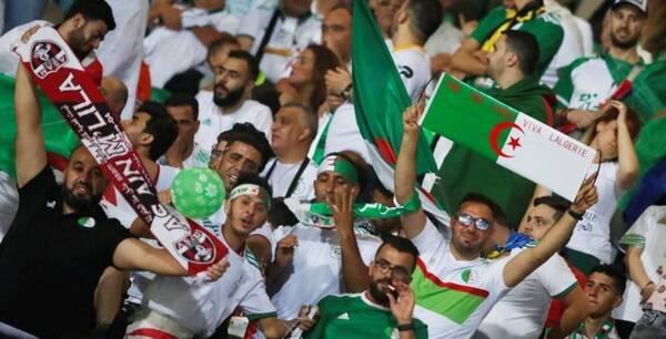 أمم إفريقيا 2019 .. تعرف على تاريخ لقاءات الجزائر أمام نيجيريا قبل لقائهم غدا
