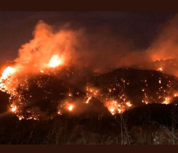 صورة صراخات استغاثة..حرائق كبيرة بلبنان تلتهم مناطق واسعة