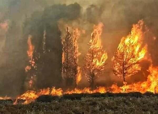 صورة نشوب حرائق كبيرة بعدة محافظات بسوريا