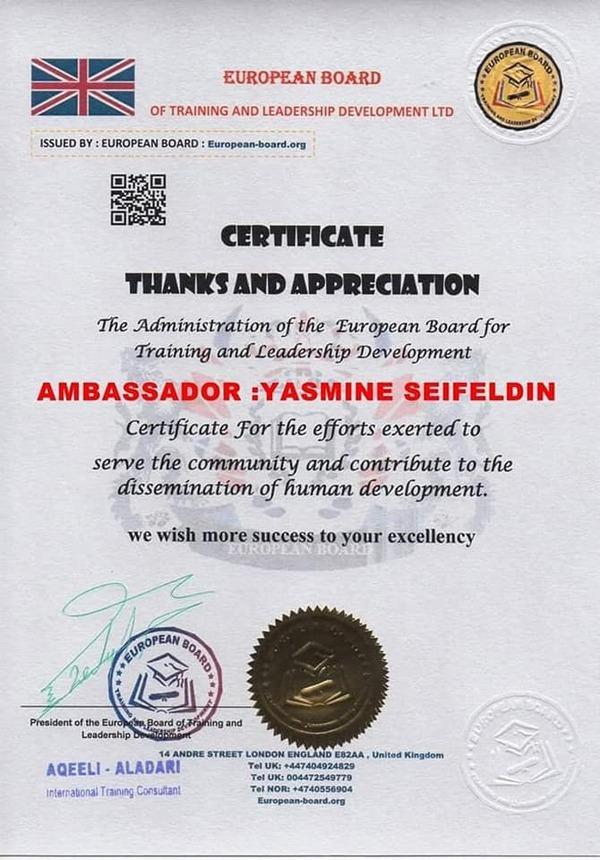 تكريم الاعلامية ياسمين سيف الدين من المركز العربي الأوروبي لحقوق الإنسان